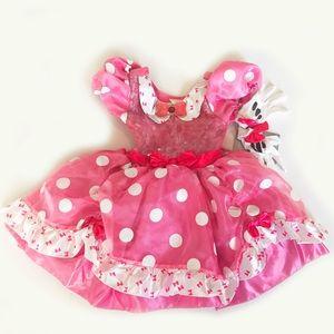 NWT Disney Princess Dress Costume